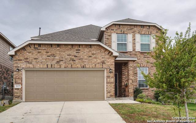 1605 Crown Daisy, San Antonio, TX 78245 (MLS #1484763) :: REsource Realty