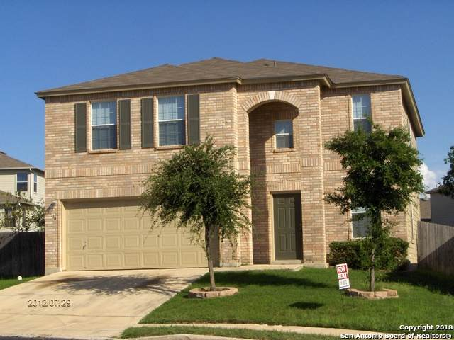 6110 Mayfair Farm, San Antonio, TX 78244 (MLS #1484789) :: Real Estate by Design