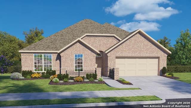 13902 Cool Dawn, San Antonio, TX 78254 (MLS #1484807) :: Real Estate by Design