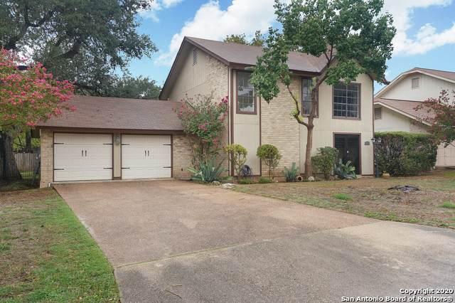 14105 Broken Tree St, San Antonio, TX 78247 (MLS #1484901) :: The Lugo Group
