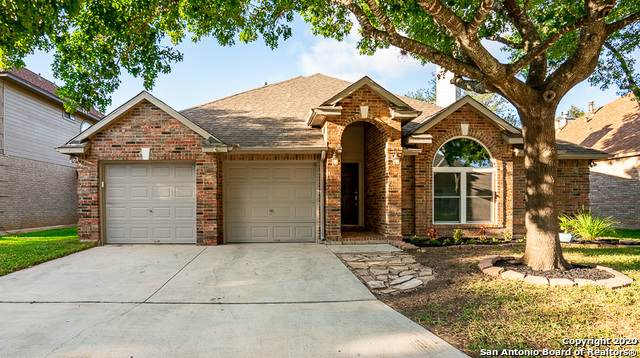 9431 Camino Venado, Helotes, TX 78023 (MLS #1485020) :: The Real Estate Jesus Team