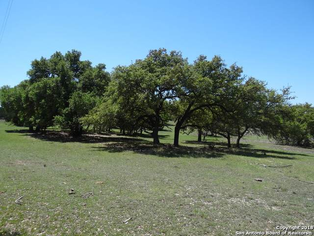 1318 Schumann Rd., Stonewall, TX 78671 (MLS #1485041) :: The Mullen Group | RE/MAX Access