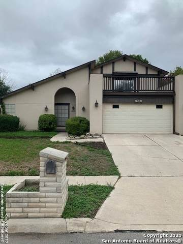 12031 Rose Blossom St, San Antonio, TX 78247 (#1485103) :: The Perry Henderson Group at Berkshire Hathaway Texas Realty