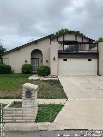 12031 Rose Blossom St, San Antonio, TX 78247 (MLS #1485103) :: ForSaleSanAntonioHomes.com
