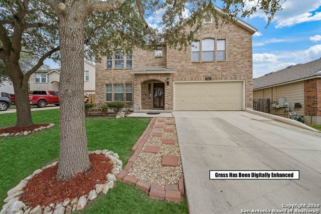 8807 Mainland Ridge, San Antonio, TX 78250 (MLS #1485188) :: Neal & Neal Team