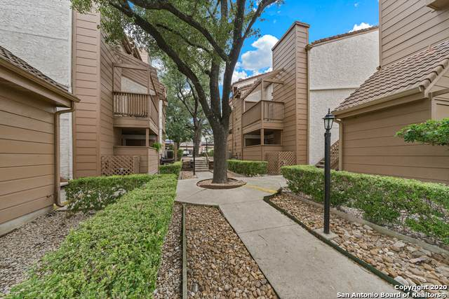 4107 Medical Dr #4205, San Antonio, TX 78229 (MLS #1485307) :: Alexis Weigand Real Estate Group
