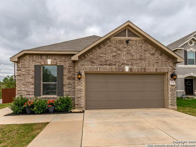 7039 Dulce Meadows, San Antonio, TX 78252 (MLS #1485418) :: The Real Estate Jesus Team
