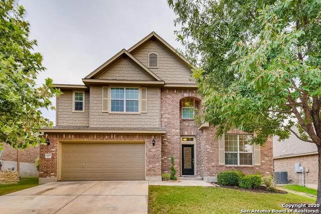 12611 Mitre Peak, San Antonio, TX 78245 (MLS #1485451) :: The Glover Homes & Land Group