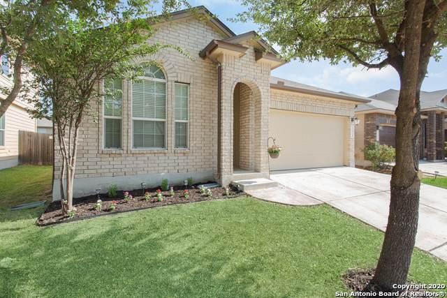 11915 Nixon Pt, San Antonio, TX 78254 (#1485509) :: 10X Agent Real Estate Team