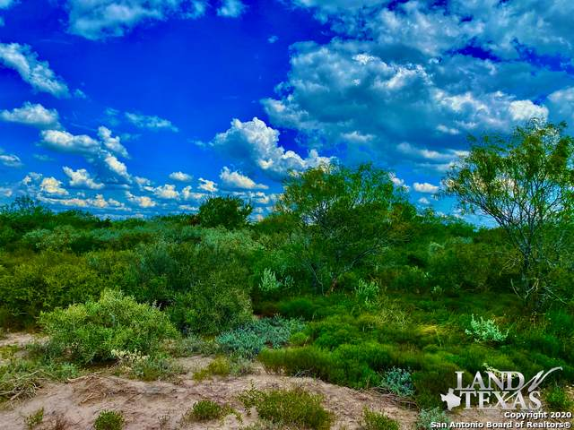 0 County Road 405, Freer, TX 78357 (#1485770) :: The Perry Henderson Group at Berkshire Hathaway Texas Realty