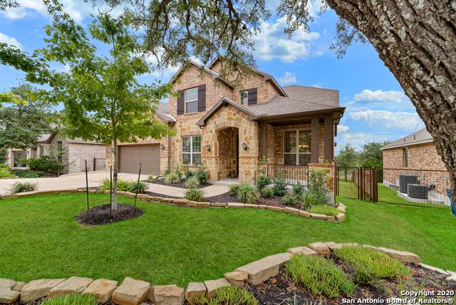 3742 Chicory Bnd, Bulverde, TX 78163 (MLS #1485811) :: The Gradiz Group
