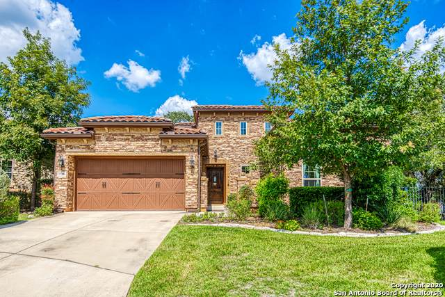 22206 Viajes, San Antonio, TX 78261 (#1485840) :: The Perry Henderson Group at Berkshire Hathaway Texas Realty