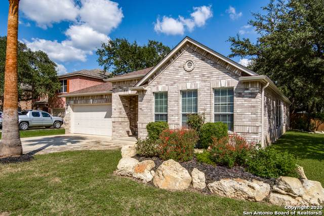 24402 Drew Gap, San Antonio, TX 78255 (MLS #1485882) :: The Gradiz Group