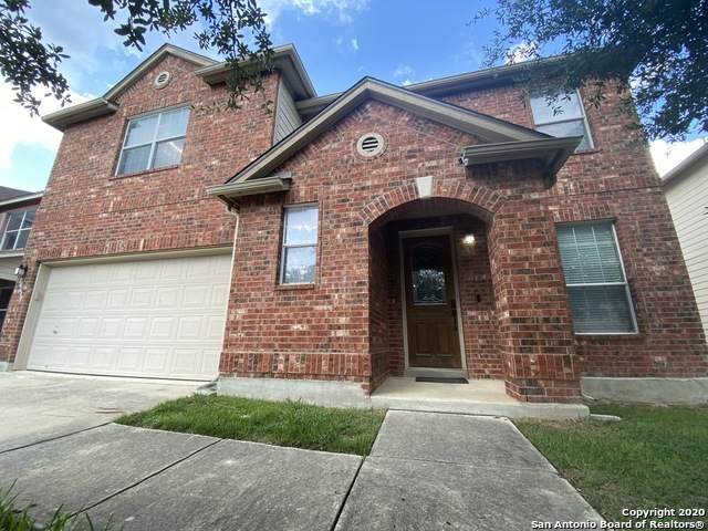 10615 Archer Pt, San Antonio, TX 78254 (MLS #1485958) :: The Lugo Group