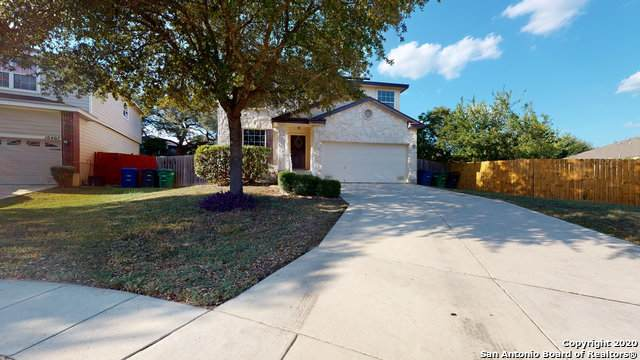 10403 Cub Valley, San Antonio, TX 78251 (MLS #1486016) :: The Gradiz Group