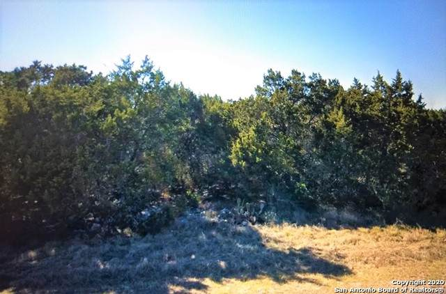 LOT 12 County Road 2720, Mico, TX 78056 (MLS #1486029) :: BHGRE HomeCity San Antonio