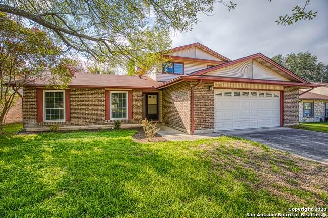 5342 Maple Vista, San Antonio, TX 78247 (MLS #1486119) :: The Heyl Group at Keller Williams