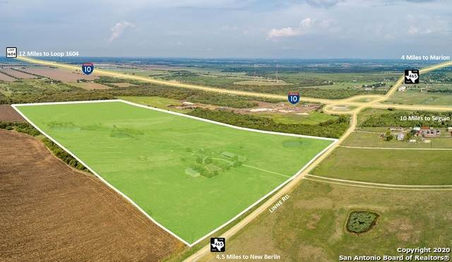 4080 Linne Rd, New Berlin, TX 78155 (MLS #1486176) :: Tom White Group