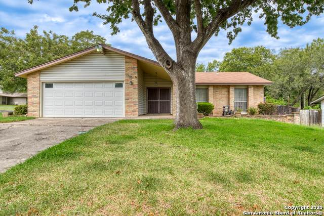 6539 David Dr, San Antonio, TX 78239 (MLS #1486225) :: Alexis Weigand Real Estate Group
