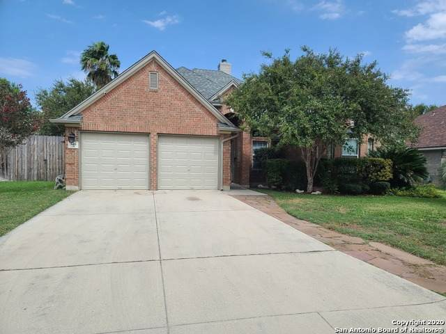 546 Walnut Heights Blvd, New Braunfels, TX 78130 (MLS #1486287) :: Front Real Estate Co.