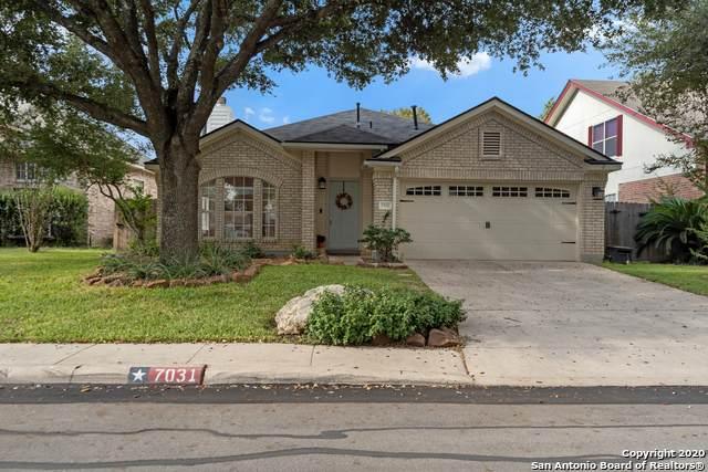 7031 Quail Wilde, San Antonio, TX 78250 (MLS #1486399) :: Neal & Neal Team