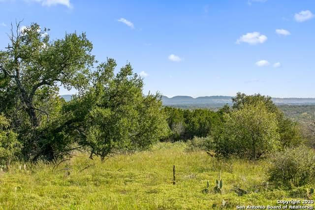 308 Cactus Trail, Johnson City, TX 78636 (MLS #1486406) :: The Lugo Group