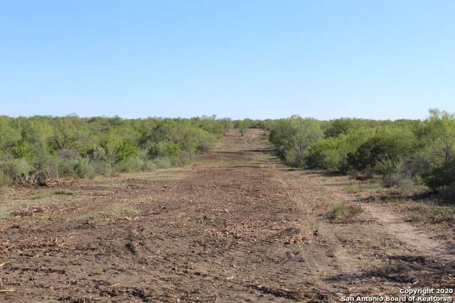 631 Lilly Bear Lane - Tract 16, Moore, TX 78057 (MLS #1486708) :: The Lugo Group