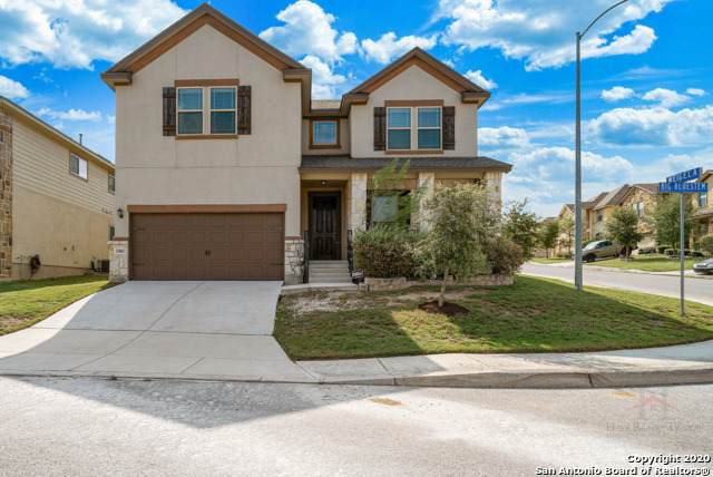 25802 Big Bluestem, San Antonio, TX 78261 (MLS #1486788) :: REsource Realty