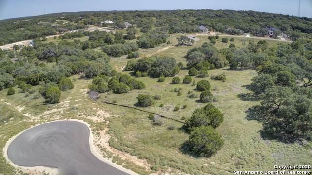 369 Butternut Way, New Braunfels, TX 78132 (MLS #1486837) :: Santos and Sandberg
