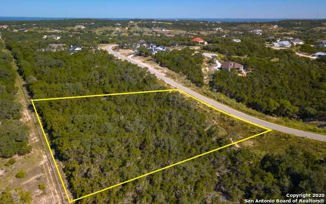 1427 Merlot, New Braunfels, TX 78132 (MLS #1486987) :: Santos and Sandberg