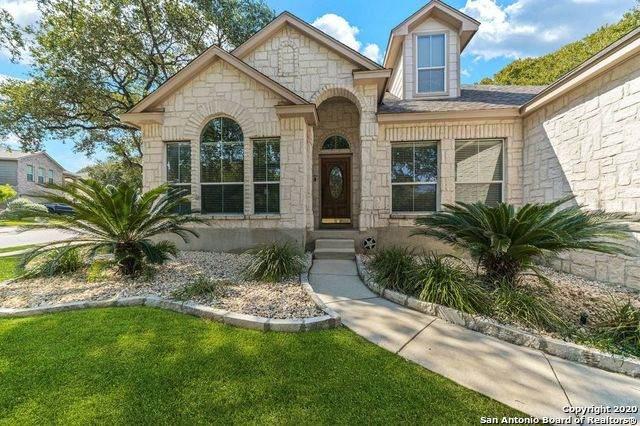 3 Canterview, San Antonio, TX 78254 (MLS #1487541) :: The Gradiz Group