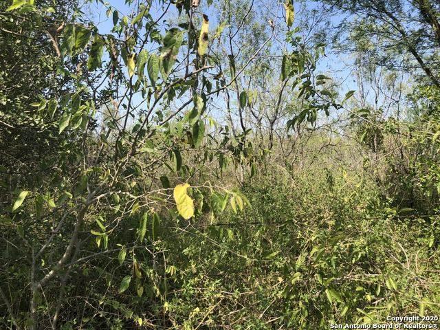 C Cr 431, Pleasanton, TX 78064 (MLS #1487584) :: ForSaleSanAntonioHomes.com