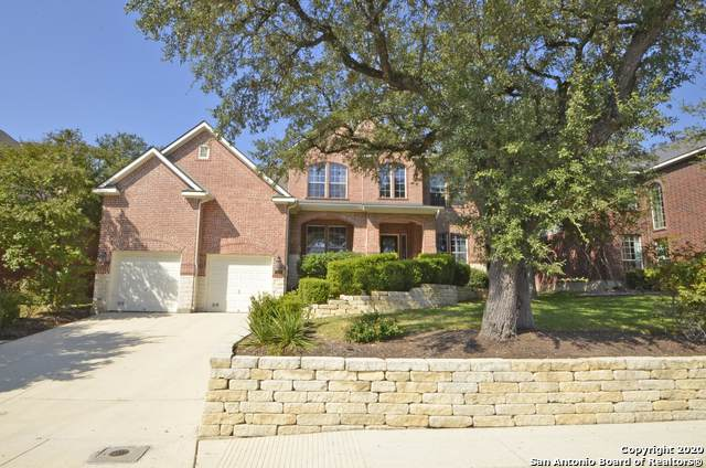 503 Penstemon Trail, San Antonio, TX 78256 (MLS #1488025) :: 2Halls Property Team | Berkshire Hathaway HomeServices PenFed Realty