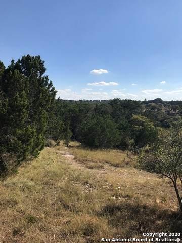 115 Durango Pass, Comfort, TX 78013 (MLS #1488141) :: 2Halls Property Team | Berkshire Hathaway HomeServices PenFed Realty