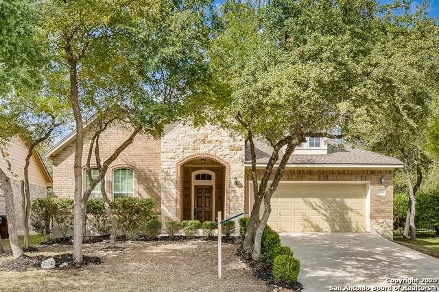 10611 Carmona, Helotes, TX 78023 (MLS #1488243) :: REsource Realty