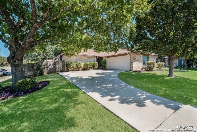 7746 Apple Green, San Antonio, TX 78240 (MLS #1488255) :: The Gradiz Group
