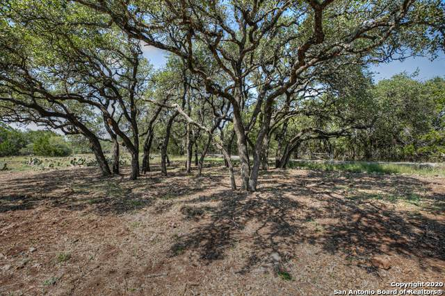 199 Elk Ridge, Canyon Lake, TX 78133 (MLS #1488385) :: The Gradiz Group