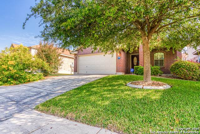 14526 Perpetual, San Antonio, TX 78247 (MLS #1488530) :: The Castillo Group