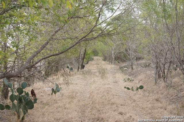 284 E County Road 674, Natalia, TX 78059 (MLS #1488543) :: REsource Realty