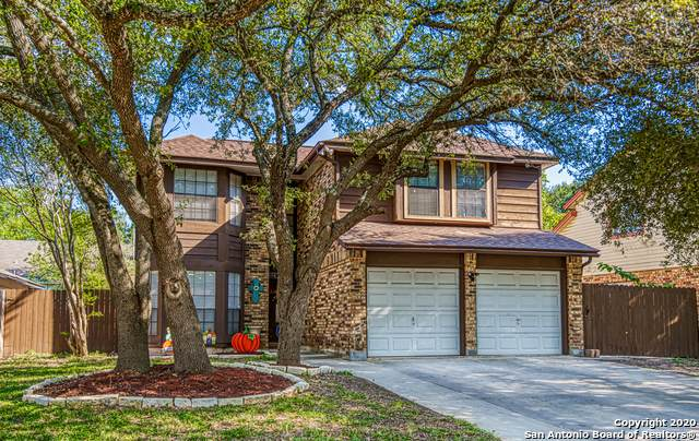 6210 John Chapman, San Antonio, TX 78240 (MLS #1488552) :: The Gradiz Group