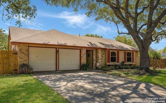 12202 Mint St, San Antonio, TX 78247 (MLS #1488584) :: REsource Realty