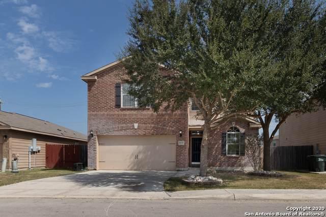 6630 Luckey Tree, San Antonio, TX 78252 (MLS #1488765) :: REsource Realty