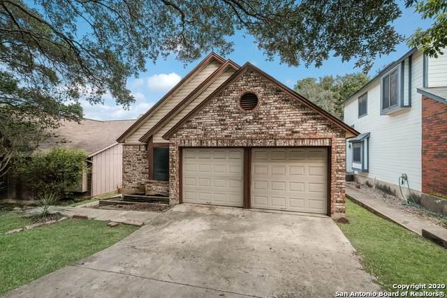 16630 Fallen Tree Dr, San Antonio, TX 78247 (MLS #1488823) :: Neal & Neal Team