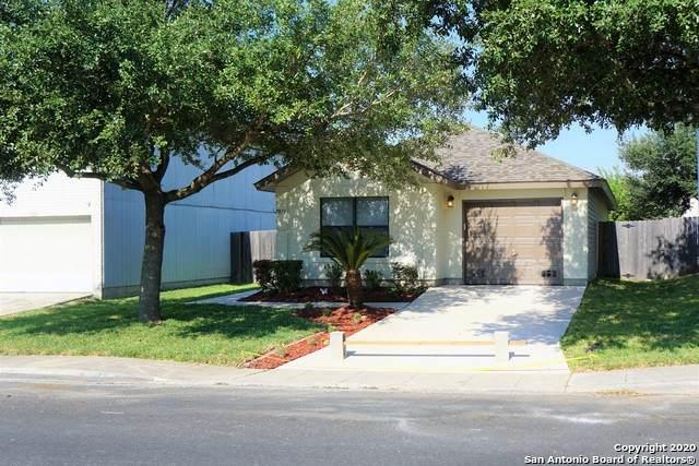 7033 Blossom Creek, Converse, TX 78109 (MLS #1488933) :: REsource Realty