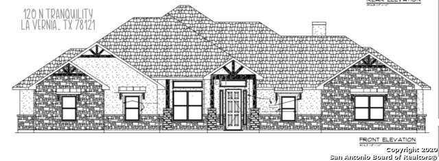 120 N Tranquility Dr, La Vernia, TX 78121 (MLS #1488986) :: REsource Realty