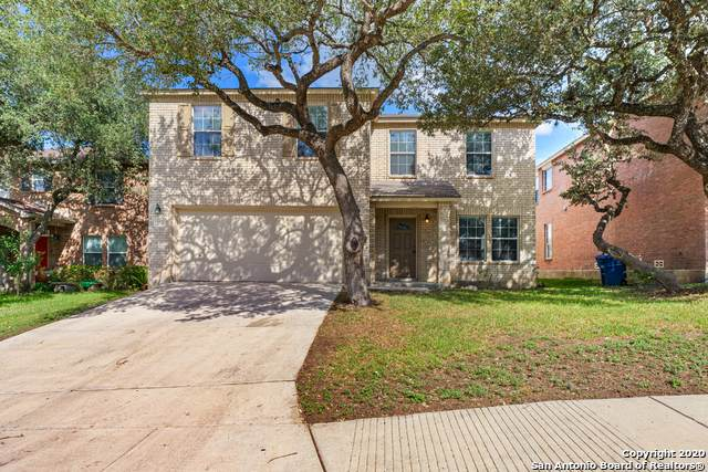 7214 Adair Post, San Antonio, TX 78250 (MLS #1489023) :: Alexis Weigand Real Estate Group