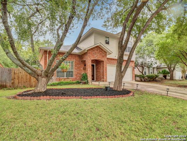 6218 John Chapman, San Antonio, TX 78240 (MLS #1489036) :: The Gradiz Group