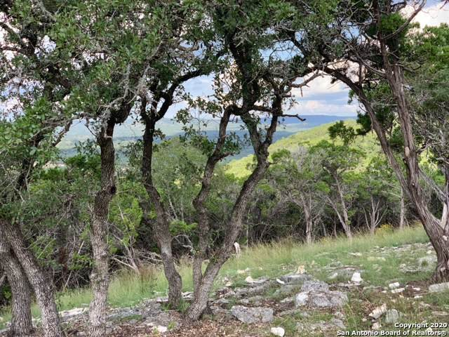 LOT 14A Caprock Ridge, Helotes, TX 78023 (MLS #1489106) :: Neal & Neal Team