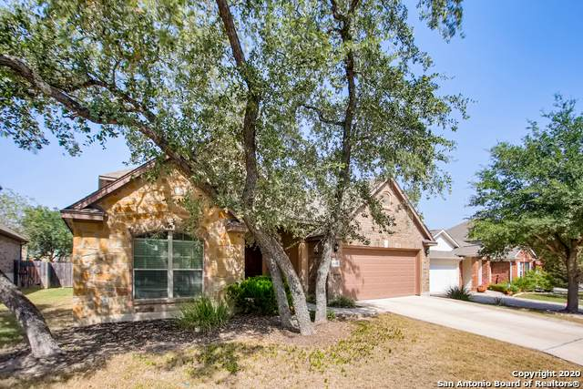 3615 Marlark Pass, San Antonio, TX 78261 (MLS #1489110) :: The Lugo Group