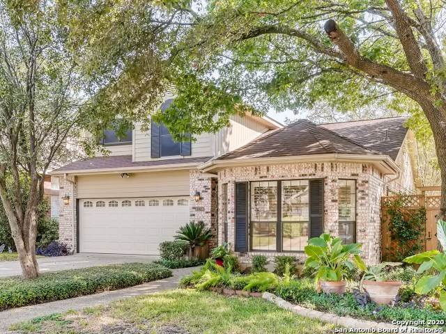 14206 Red Maple Wood, San Antonio, TX 78249 (MLS #1489281) :: 2Halls Property Team | Berkshire Hathaway HomeServices PenFed Realty